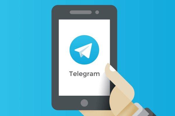 Telegram в России могут разблокировать уже через месяц