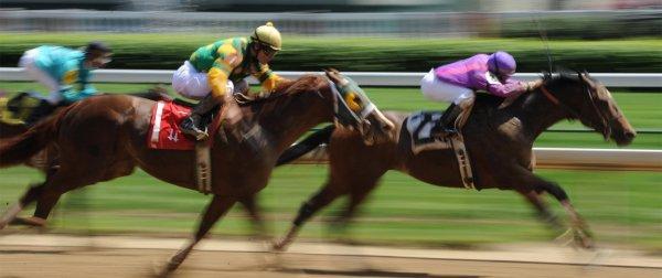 Американка выиграла миллион, поставив всего 18 долларов на победу пяти лошадей
