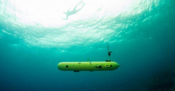 В Турции создали подводного робота-убийцу военных кораблей