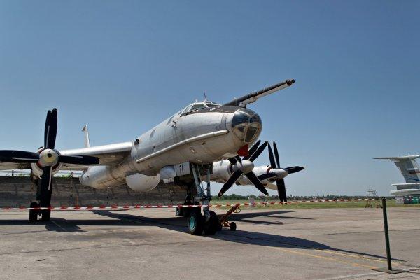Истребители США F-22 не помешали российским Ту-95 и Ту-142 выполнить задачи