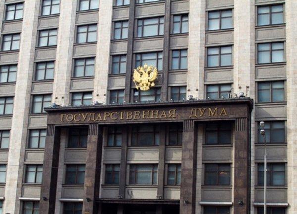 Депутаты Госдумы во втором чтении поддержали введение контрсанкций