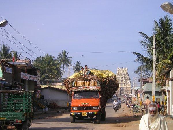 В Индии 19 человек погибли в аварии с грузовиком