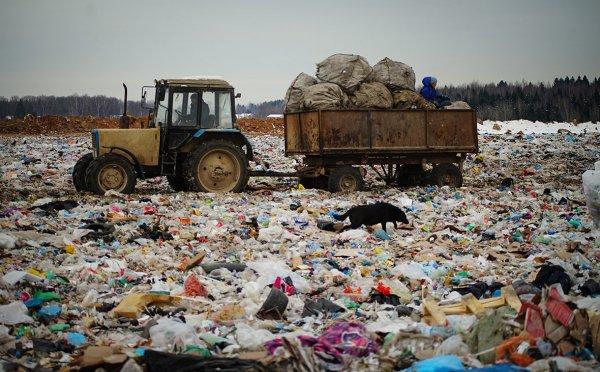 На ПМЭФ-2018 обсудили свалки и экологию