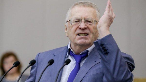 И волки сыты, и овцы целы: Жириновский объяснил операцию Киева с Бабченко