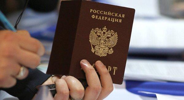 В Петербурге чиновник порвал паспорт в суде, чтобы избежать ареста