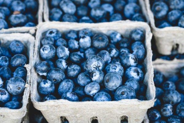 Черника из Чернобыля: На киевском рынке продают радиоактивные ягоды с цезием-137