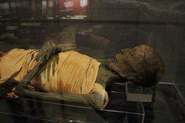 В Шлиссельбурге нашли мумию времен Петра Великого