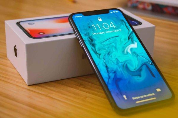 В Сети появились снимки самого бюджетного iPhone 2018