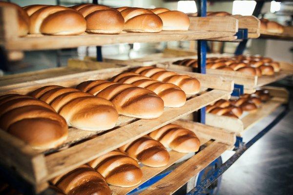Роскачество назвало регионы России с самым лучшим хлебом