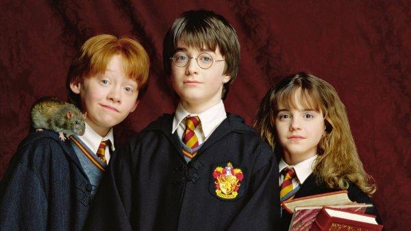 Первое издание «Гарри Поттера» продали за рекордную сумму