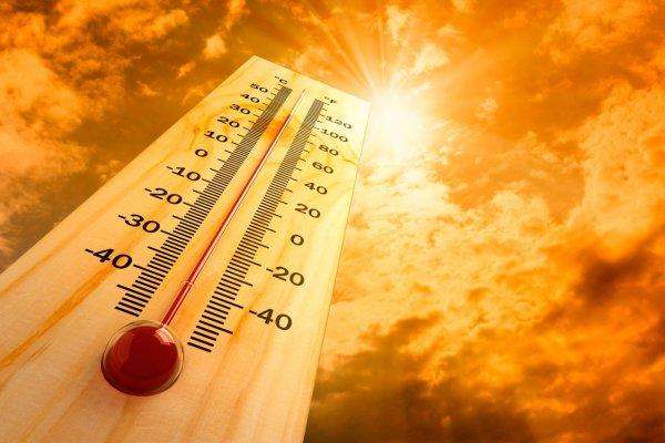 СМИ: Из-за жары в Канаде умерли 16 человек