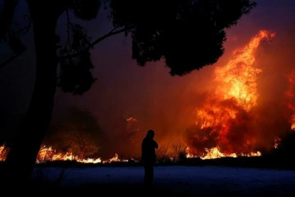 В результате сильнейшего в истории Греции пожара погибли 80 человек
