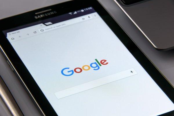 Google раскрыл тайну коз-газонокосилок и причину тотальной слежки
