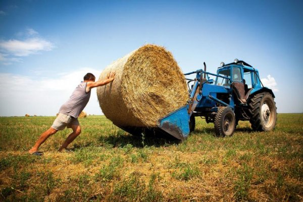 Фермеры Калужской области обсудили развитие сельского хозяйства РФ на Всероссийском форуме сельхозпроизводителей